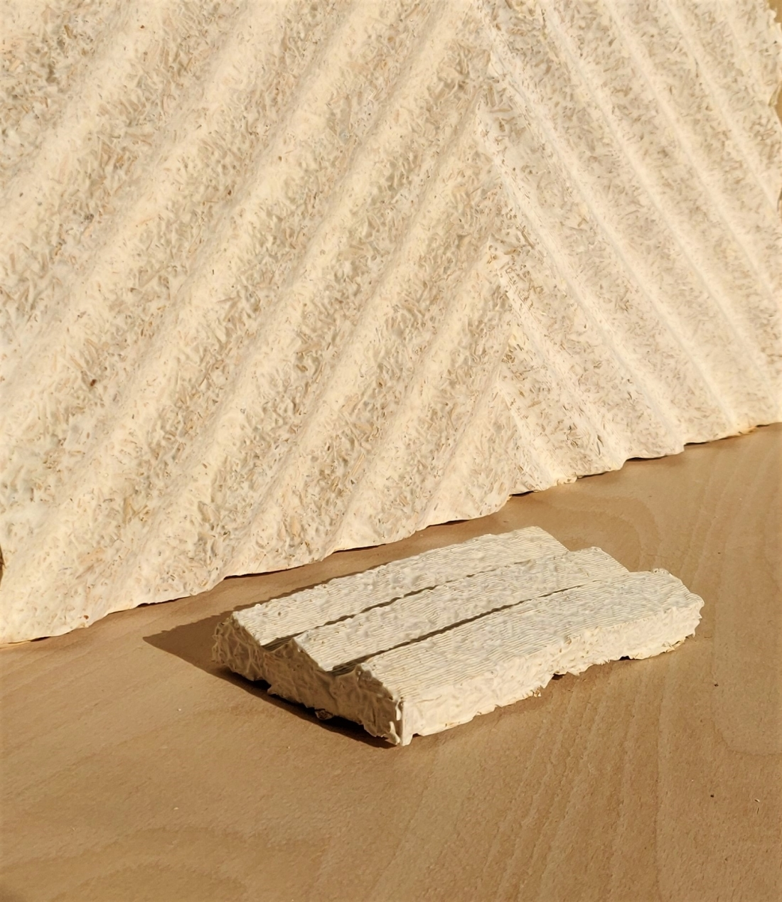 Tŷ Syml - Mycelium wall panel