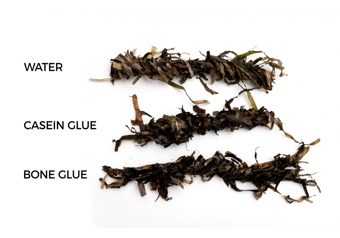 Kathryn Larsen Seaweed Thatch - Test