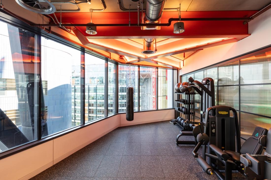 Modus Workspace AlphaFX Gym.